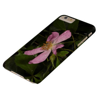Wild Rose Barely There iPhone 6 Plus Case