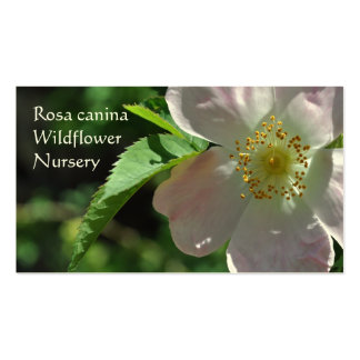 Wild rose, Horticultural business card