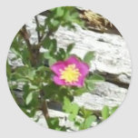 Wild Rose Stickers