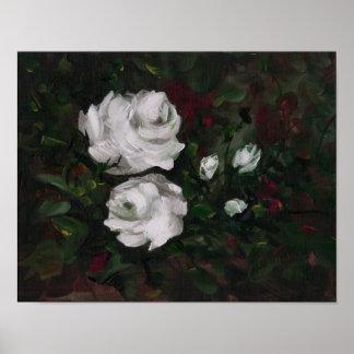 Wild Rose Study Poster