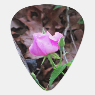 Wild Rosebud and Butterfly Guitar Pick