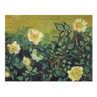 Wild Roses,1890.  Vincent van Gogh. Post Cards