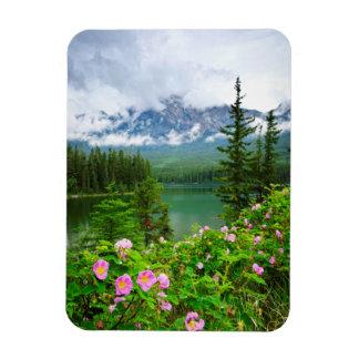 Wild roses and mountain lake in Jasper Vinyl Magnets