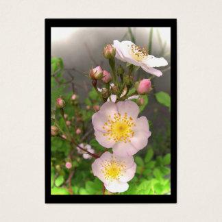 Wild Roses ATC Business Card