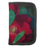wild roses folio planner