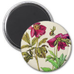Wild Roses Refrigerator Magnets