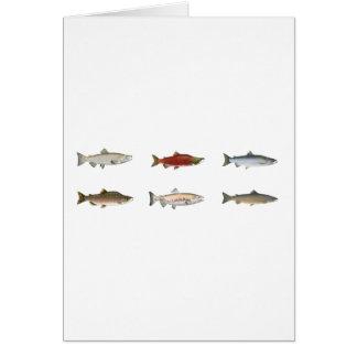 Wild Salmon Card