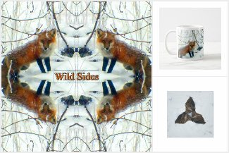 Wild Sides