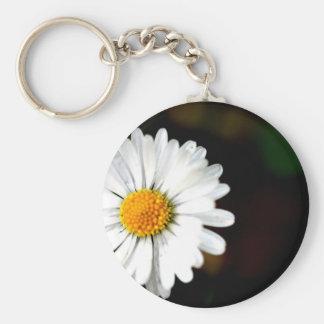 Wild Single Daisy Flower Basic Round Button Keychain