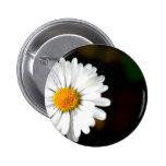 Wild Single Daisy Flower Buttons