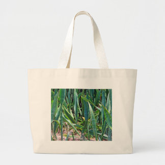 Wild Snake Plant Outside in Florida Large Tote Bag