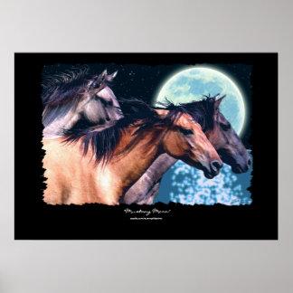 Wild Spanish Mustang Horses Art Poster