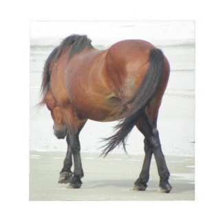 Wild Spanish Mustang OBX NC Note Pad