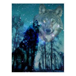 Wild Spirit Postcard