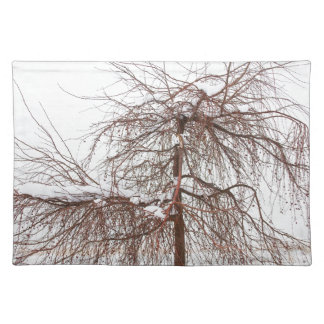 Wild Springtime Winter Tree Place Mat