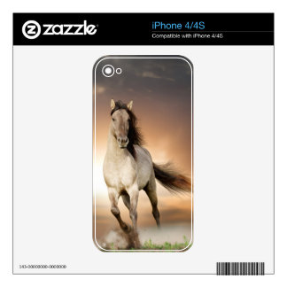 Wild Stallion Running In Sunset Decal For iPhone 4