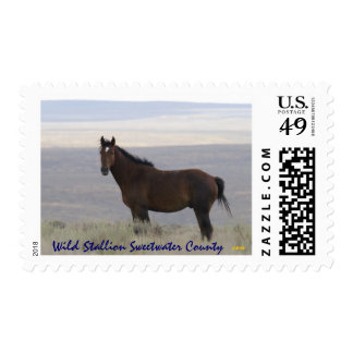 Wild Stallion Sweetwater County Stamp