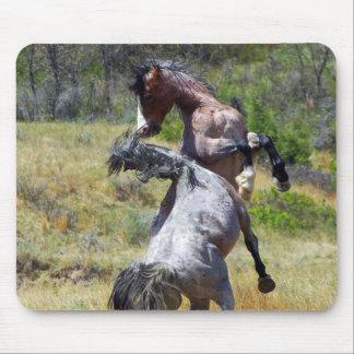 Wild Stallions Fighting Theodore Roosevelt NP Mouse Pad