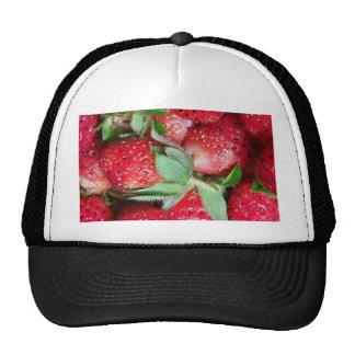Wild Strawberries Mesh Hat