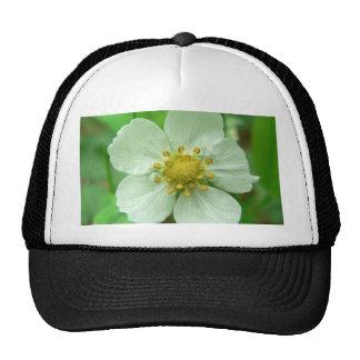 Wild Strawberry Flower Trucker Hat