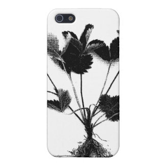 Wild Strawberry or Fragaria Vesca Cover For iPhone 5