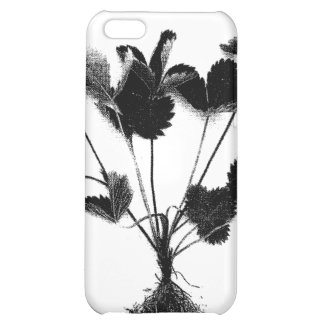 Wild Strawberry or Fragaria Vesca Cover For iPhone 5C