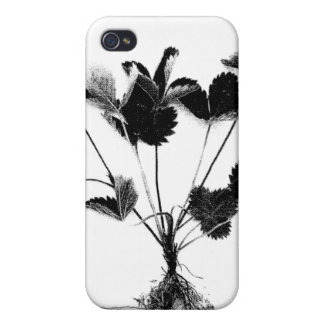 Wild Strawberry or Fragaria Vesca Case For iPhone 4