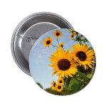 Wild Sunflowers 2 Inch Round Button