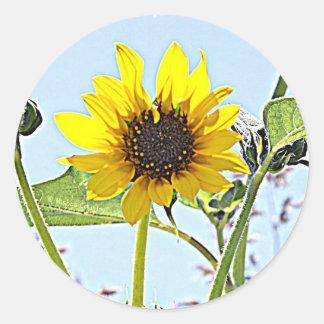 Wild Sunflowers Classic Round Sticker