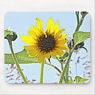 Wild Sunflowers Mouse Pads