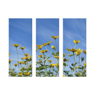 Wild Sunflowers Three Panel Wrapped Canvas Print Canvas Print