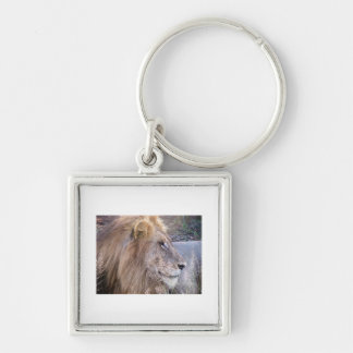 WILD THING - LION Silver-Colored SQUARE KEYCHAIN