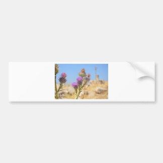 Wild Thistle Bumper Sticker