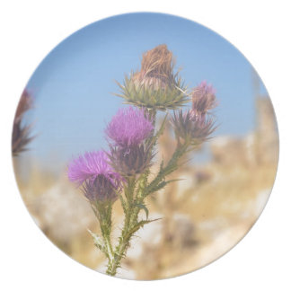 Wild Thistle Party Plates