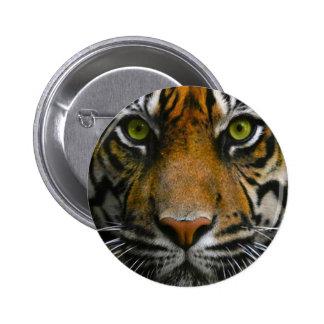 Wild Tiger Eyes 2 Inch Round Button