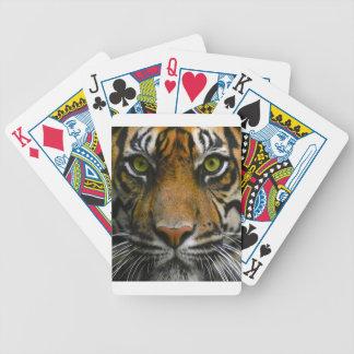 Wild Tiger Eyes Bicycle Playing Cards