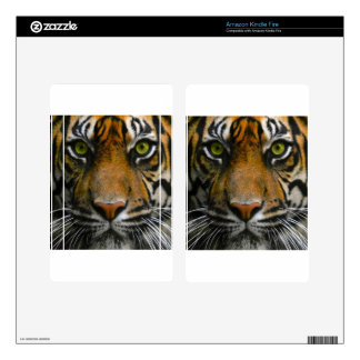 Wild Tiger Eyes Kindle Fire Decals