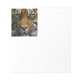 Wild Tiger Eyes Memo Notepads