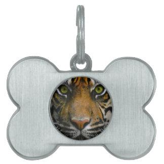 Wild Tiger Eyes Pet Tag