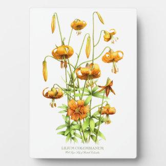 Wild Tiger Lilies Plaque