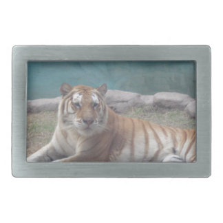 Wild Tiger Range of Products Belt Buckle