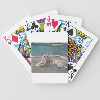 Wild Tiger Range of Products Bicycle Playing Cards