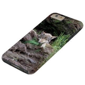 Wild Timber Wolf Cub in Den Tough iPhone 6 Plus Case