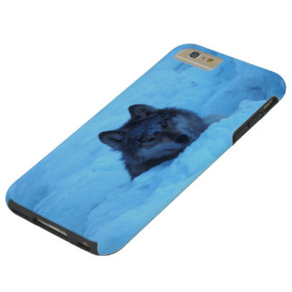 Wild Timber Wolf in Blue Snow Tough iPhone 6 Plus Case