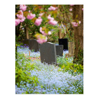 Wild tranquility, beautiful churchyard. Hopwas UK Postcard