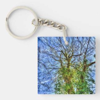 Wild Tree Keychain