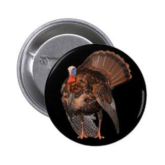Wild Turkey (Alabama, Massachusetts, Oklahoma) Button