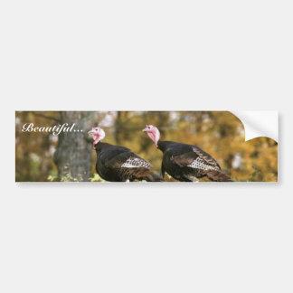 Wild turkey bumper sticker