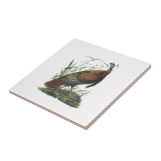 Wild Turkey by Audubon Ceramic Tile