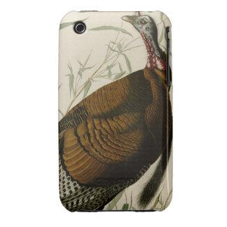 Wild Turkey iPhone 3 Case